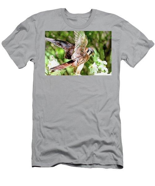 American Kestrel Hawk Men's T-Shirt (Athletic Fit)