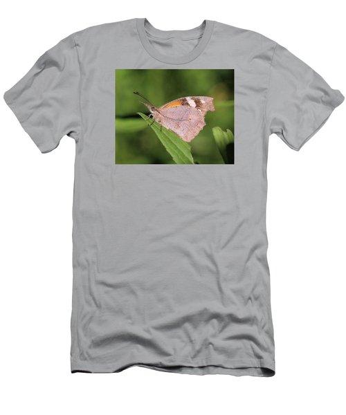 American Snout Men's T-Shirt (Slim Fit) by Doris Potter