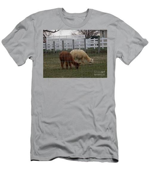 An Evening Graze Men's T-Shirt (Athletic Fit)