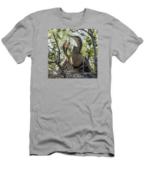 Anhinga In Nest With Her Chicks Men's T-Shirt (Athletic Fit)