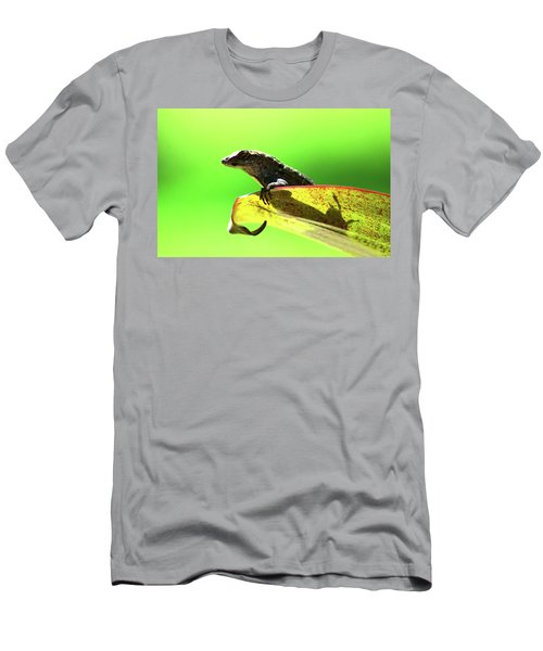 Anole In Green Men's T-Shirt (Athletic Fit)