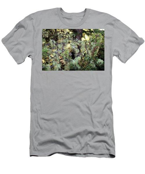 Arboreal Lichens Men's T-Shirt (Athletic Fit)