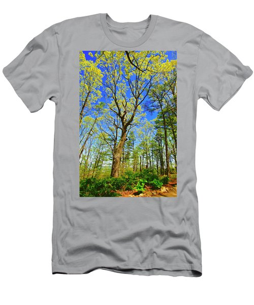 Artsy Tree Series, Early Spring - # 04 Men's T-Shirt (Athletic Fit)