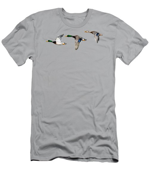 Flying Mallards Men's T-Shirt (Athletic Fit)