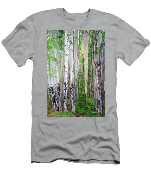Aspen Grove In The White Mountains Men's T-Shirt (Athletic Fit)
