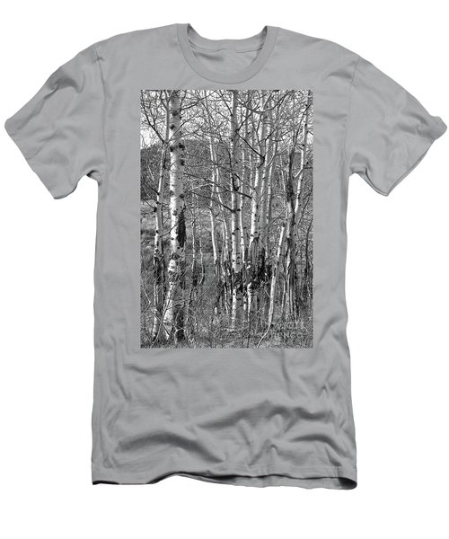Aspens Men's T-Shirt (Slim Fit) by Kathy Russell