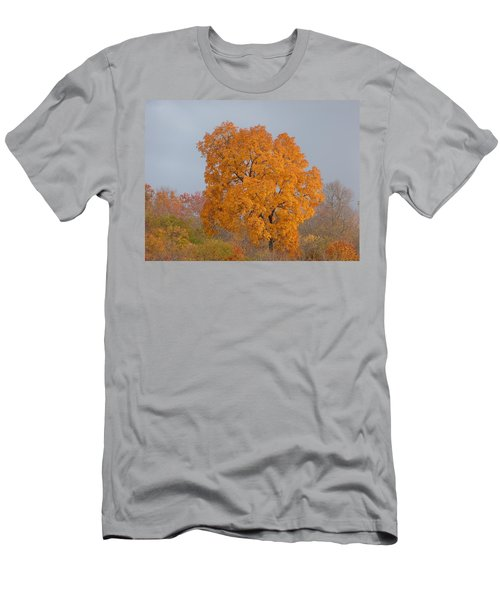 Men's T-Shirt (Slim Fit) featuring the photograph Autumn Tree by Donald C Morgan