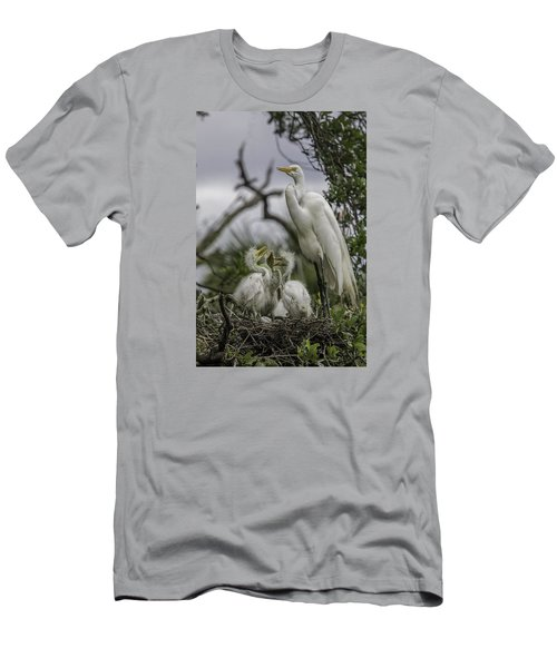 Babies In The Nest Men's T-Shirt (Slim Fit) by Dorothy Cunningham