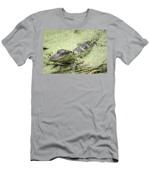 Baby Alligator Men's T-Shirt (Athletic Fit)