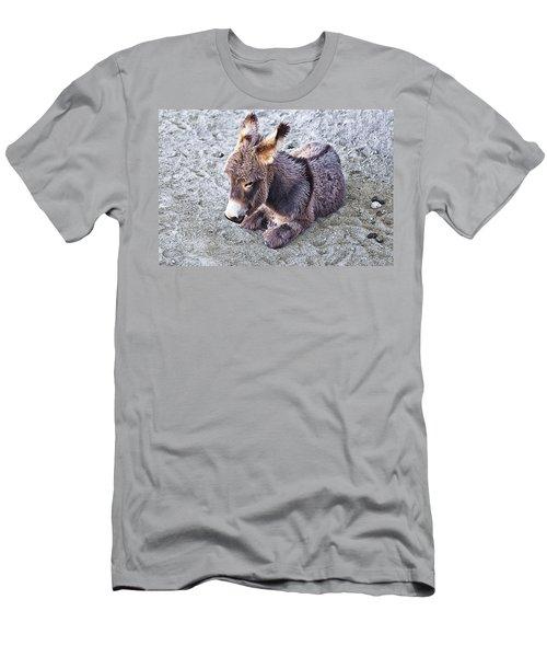 Baby Burro Men's T-Shirt (Athletic Fit)