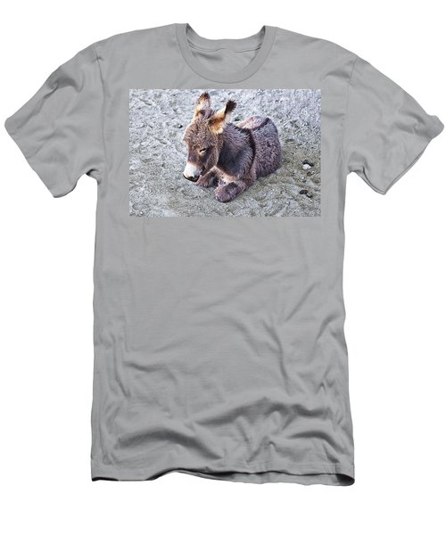 Baby Burro Men's T-Shirt (Athletic Fit)