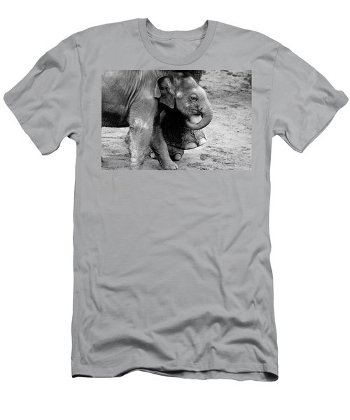 Baby Elephant Security Men's T-Shirt (Slim Fit) by Wes and Dotty Weber