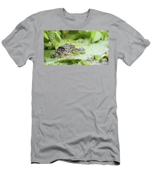 Baby Gator Men's T-Shirt (Athletic Fit)