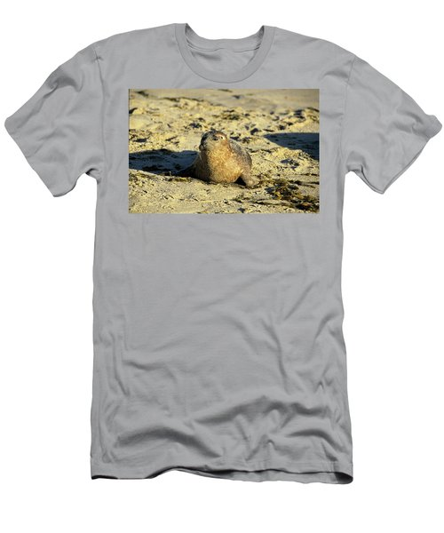 Baby Seal In Sand Men's T-Shirt (Athletic Fit)