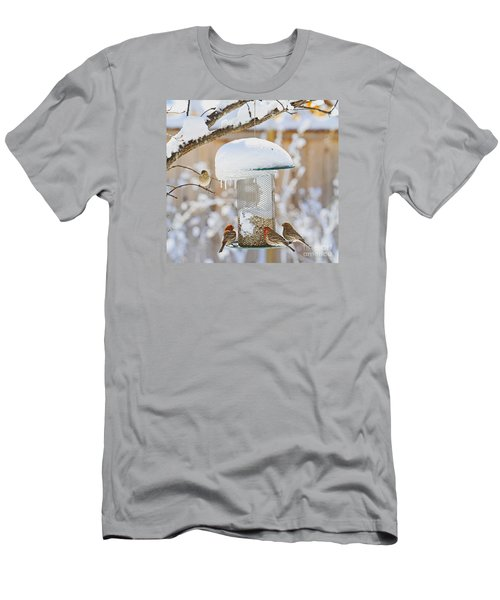 Backyard Birds Men's T-Shirt (Athletic Fit)