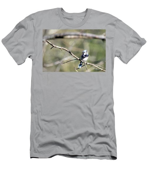 Backyard Blue Jay Oil Men's T-Shirt (Athletic Fit)