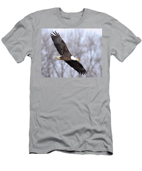 Bald Eagle In Flight Men's T-Shirt (Athletic Fit)