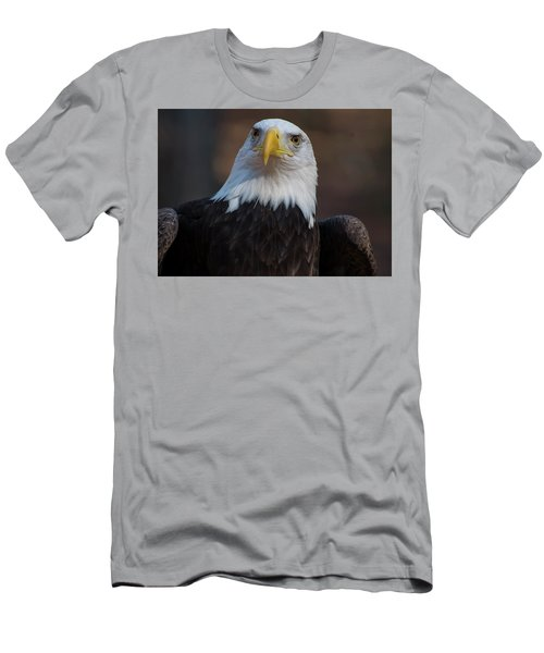 Bald Eagle Looking Right Men's T-Shirt (Athletic Fit)
