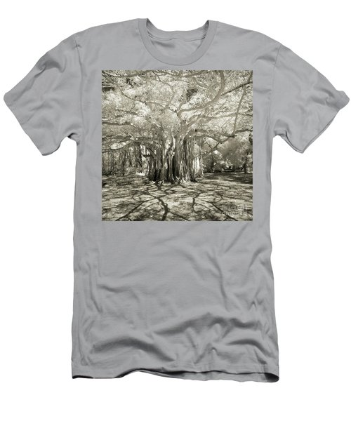 Banyan Strangler Fig Tree Men's T-Shirt (Athletic Fit)