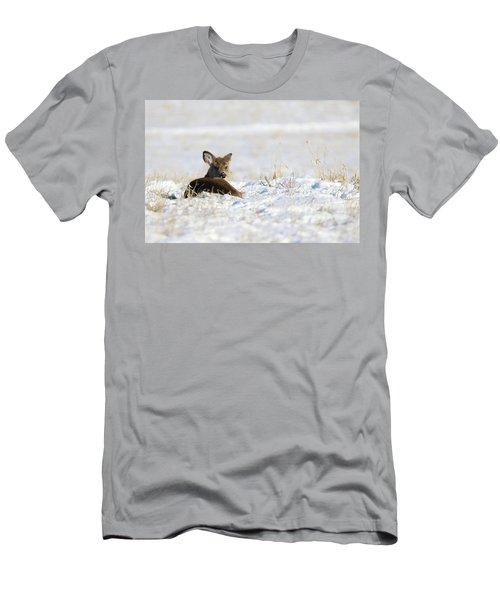 Bedded Fawn In Snowy Field Men's T-Shirt (Slim Fit) by Brook Burling