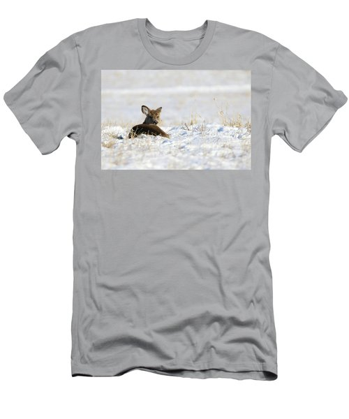 Bedded Fawn In Snowy Field Men's T-Shirt (Athletic Fit)