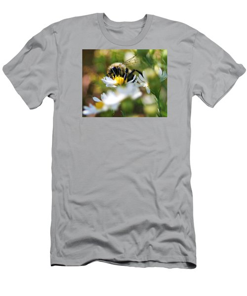 Bee On Aster Men's T-Shirt (Athletic Fit)