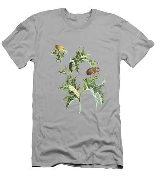 Beetles With Larvae On A Thistle By Cornelis Markee 1763 Men's T-Shirt (Athletic Fit)