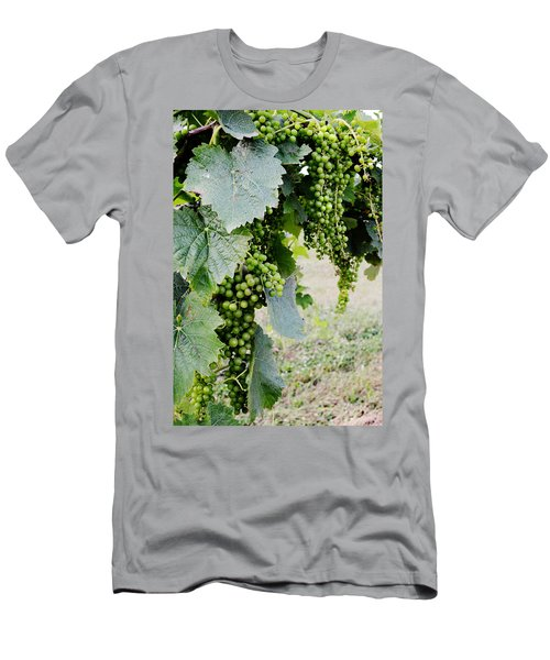 Before The Harvest Men's T-Shirt (Athletic Fit)