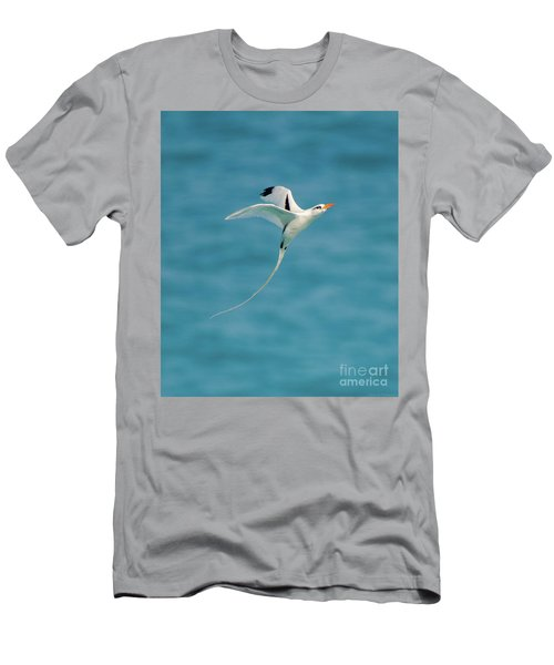 Bermuda Longtail S Curve Men's T-Shirt (Slim Fit) by Jeff at JSJ Photography