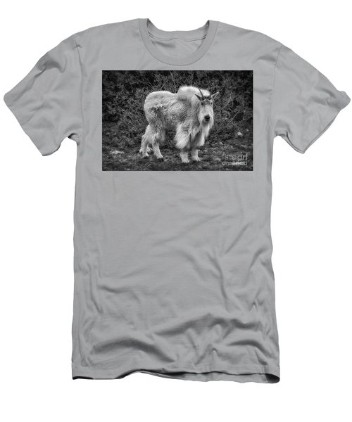 Men's T-Shirt (Athletic Fit) featuring the photograph Big Billy by Bitter Buffalo Photography
