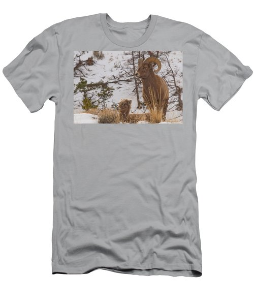 Bighorn Ram And Kid Men's T-Shirt (Athletic Fit)