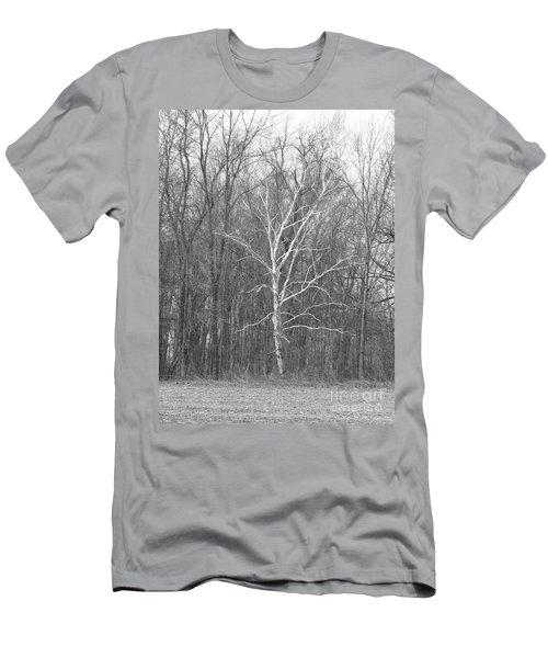 Birch In Bw Men's T-Shirt (Slim Fit) by Erick Schmidt