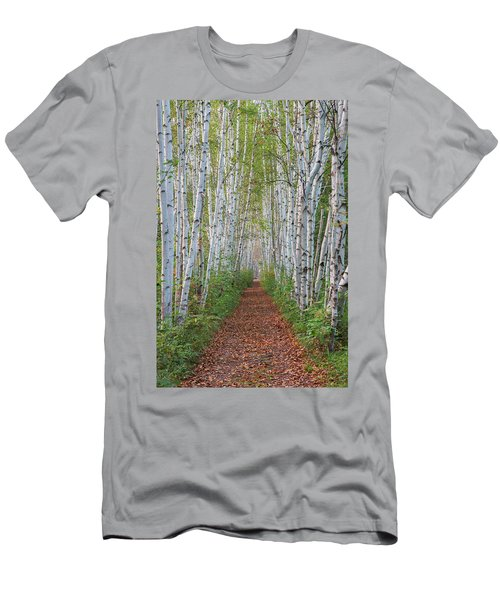 Birch Path Men's T-Shirt (Athletic Fit)