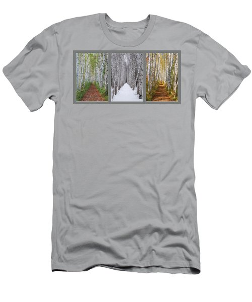 Birch Path Three Season Collage Men's T-Shirt (Athletic Fit)