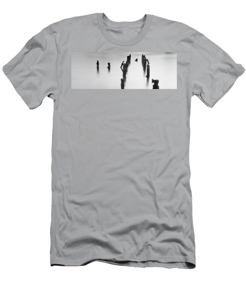 Birds Eye View.. Men's T-Shirt (Athletic Fit)