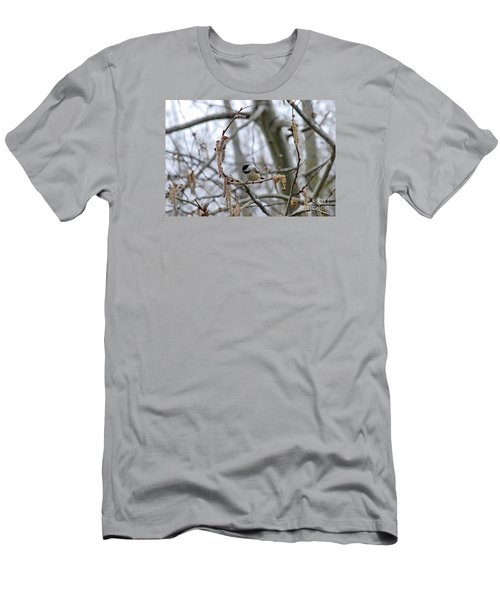 Black-capped Chickadee 20120321_38a Men's T-Shirt (Athletic Fit)
