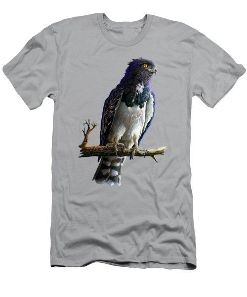 Black Chested Snake Eagle Men's T-Shirt (Athletic Fit)