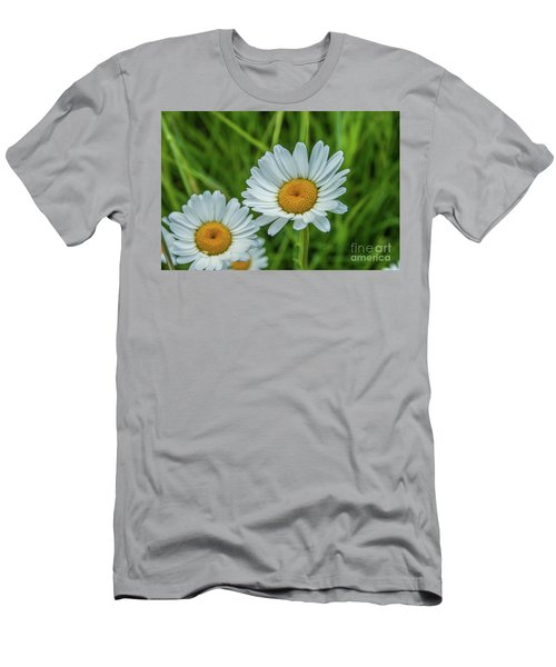 Black-headed Daisy's Men's T-Shirt (Athletic Fit)