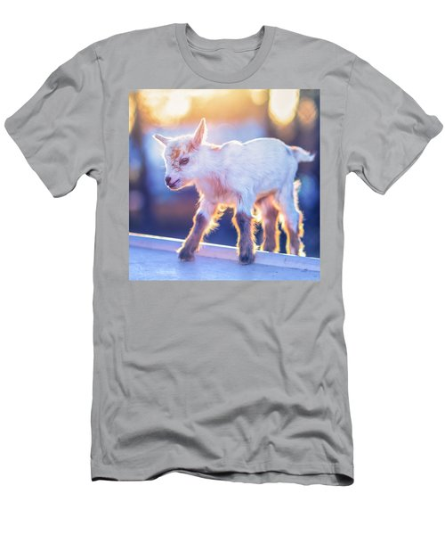 Little Baby Goat Sunset Men's T-Shirt (Athletic Fit)