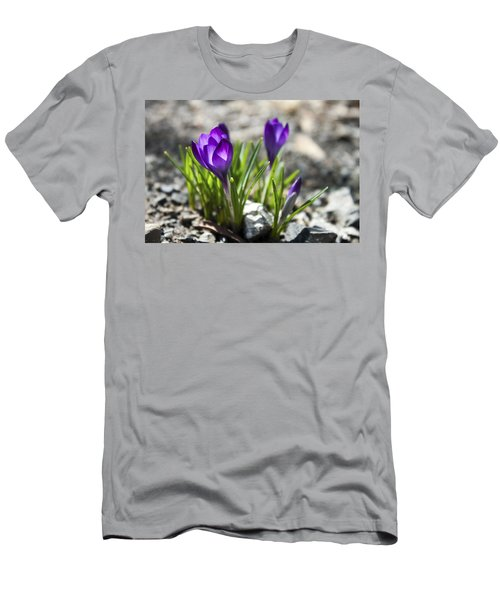 Men's T-Shirt (Slim Fit) featuring the photograph Blooming Crocus #1 by Jeff Severson