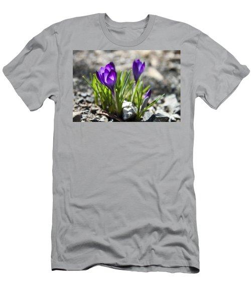 Blooming Crocus #1 Men's T-Shirt (Slim Fit) by Jeff Severson