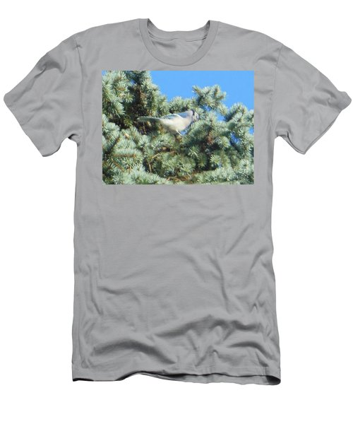 Blue Jay Colorado Spruce Men's T-Shirt (Athletic Fit)