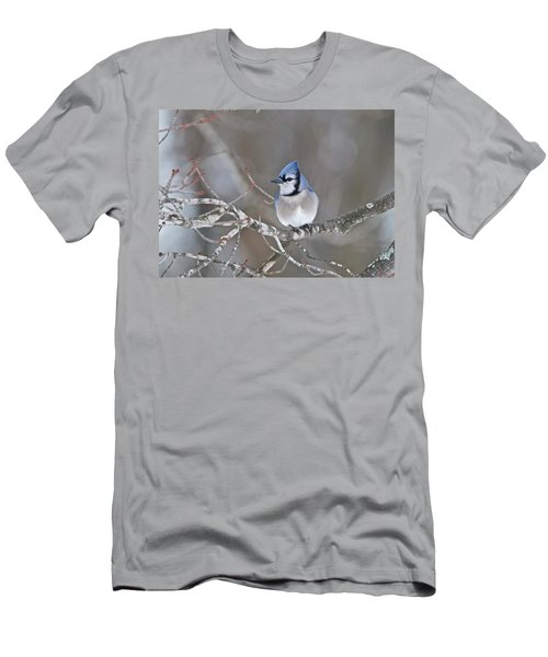 Bluejay 1352 Men's T-Shirt (Athletic Fit)