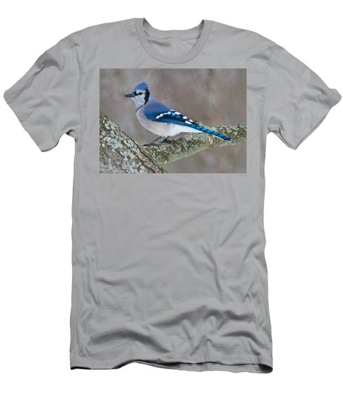Bluejay 1357 Men's T-Shirt (Athletic Fit)