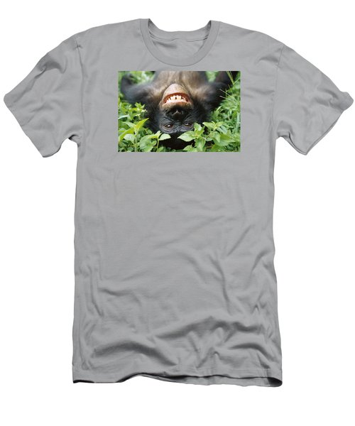 Bonobo Smiling Men's T-Shirt (Athletic Fit)