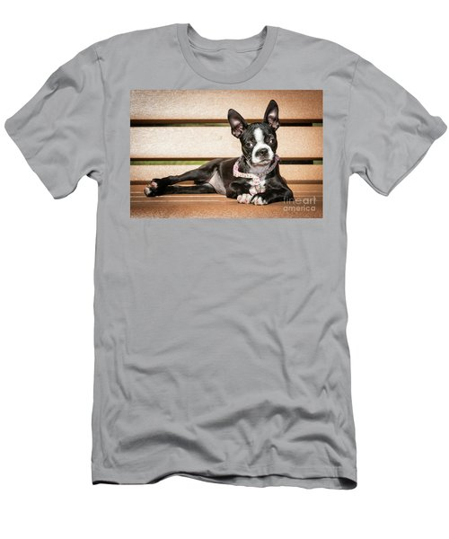 Boston Terrier Puppy Relaxing Men's T-Shirt (Slim Fit) by Stephanie Hayes