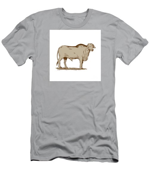 Brahman Bull Drawing Men's T-Shirt (Athletic Fit)