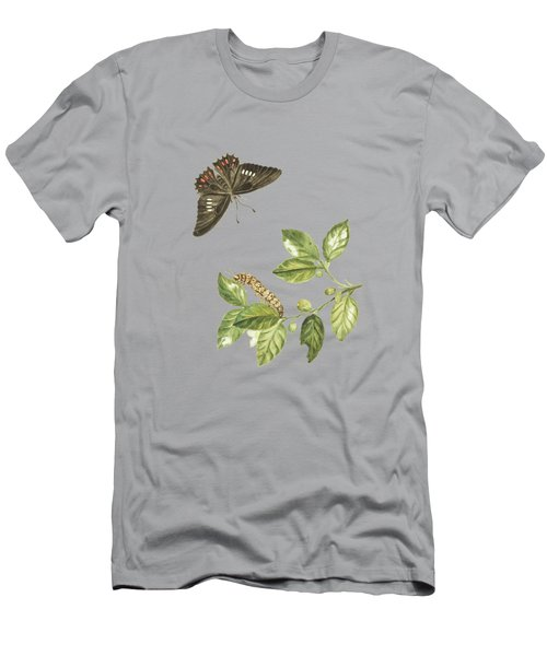 Branch Of A Limmetijen Tree Wild In Surinam By Cornelis Markee1763 Men's T-Shirt (Athletic Fit)