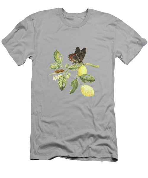 Branch Of A Limmetijen Tree With Caterpillar And Butterfly By Cornelis Markee 1763 Men's T-Shirt (Athletic Fit)