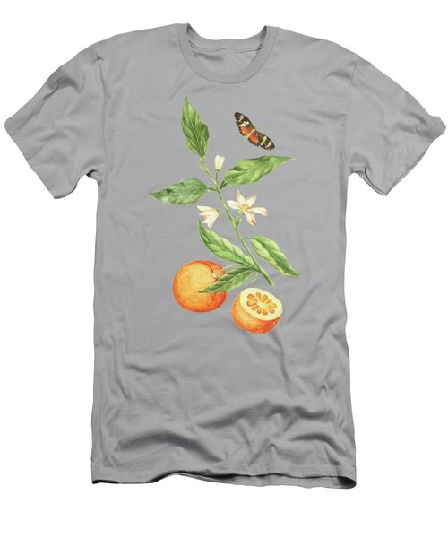 Branch With Blossoming Orange Blossom, Oranges And Butterfly By Cornelis Markee 1763 Men's T-Shirt (Athletic Fit)